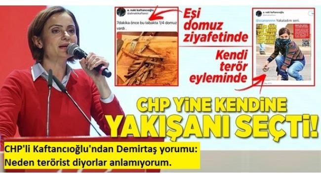 CHP'li Canan Kaftancıoğlu: Selahattin Demirtaş'a neden terörist denildiğini anlamıyorum.