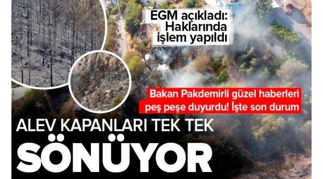 Son dakika | Tarım ve Orman Bakanı Bekir Pakdemirli açıkladı! Türkiye'deki alev kapanları tek tek sönmeye başladı